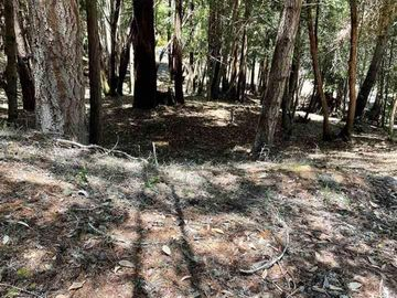 1740 Buckeye Rd Willits CA. Photo 2 of 7