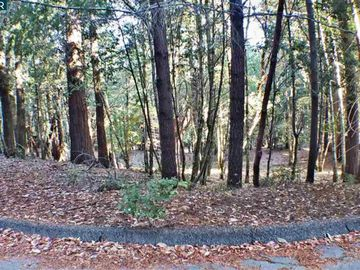 1740 Buckeye Rd Willits CA. Photo 4 of 7