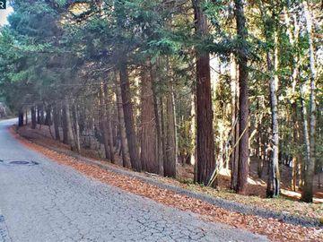 1740 Buckeye Rd Willits CA. Photo 5 of 7