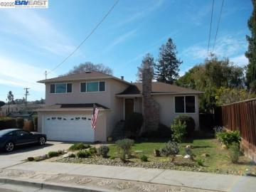 19135 Schuster Ave, Castro Valley, CA