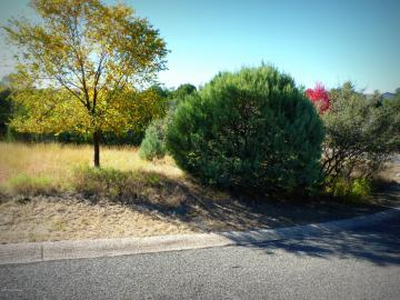 204 S Black Forest Cir, Home Lots & Homes, AZ