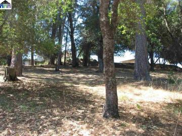 20438 Pine Mountain Dr Groveland CA. Photo 5 of 15