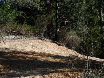 24230 Glenwood Dr Scotts Valley CA. Photo 4 of 12
