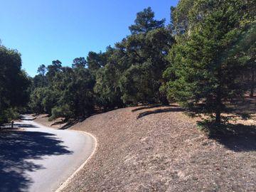 24262 Via Malpaso Lot 28, Monterey, CA