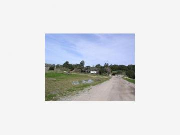 244 Hall Rd, Las Lomas, CA