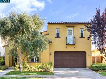 2533 Basswood Dr, Gale Ranch, CA