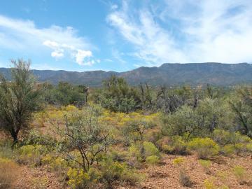 2780 S Quail Run Rd, 5 Acres Or More, AZ