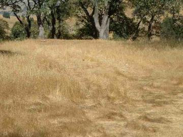 281 Castle Hill Ranch Rd, Castle Hill, CA