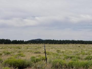 287 S Garland Prairie Rd, 5 Acres Or More, AZ