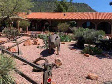 30 Solo De Paso Ln, Under 5 Acres, AZ