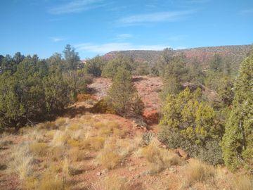313 Acacia Dr, Mystic Hills 1 - 4, AZ