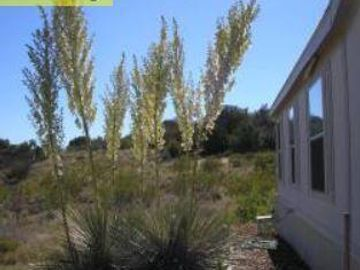 3320 E Millennium Way, 5 Acres Or More, AZ