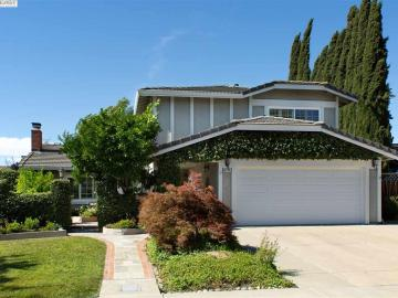 3579 Ballantyne Dr Pleasanton CA Home. Photo 1 of 40