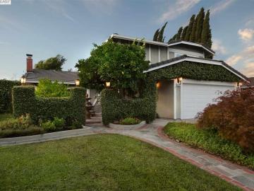 3579 Ballantyne Dr Pleasanton CA Home. Photo 2 of 40