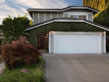 3579 Ballantyne Dr Pleasanton CA Home. Photo 3 of 40