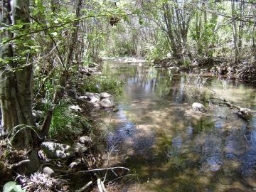 4120 E Creek View Dr, Clear Crk W2, AZ