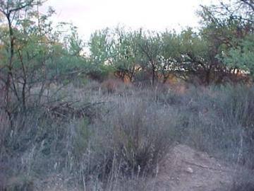4270 E Cliffside Trl Rimrock AZ. Photo 1 of 1