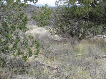 4410 N Valancius Way, Wickiup Mesa, AZ
