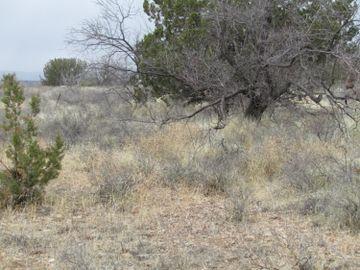 4457 N Valancius Way Rimrock AZ Home. Photo 5 of 8