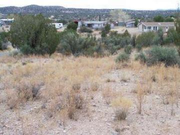 4490 N Tagalong Trl, L Montez Agri, AZ