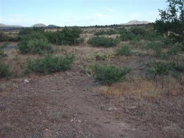 4501 E Canyon Dr, Clear Crk W1, AZ