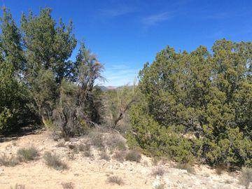4790 E Crazy Horse Cir, Thunder Ridge, AZ