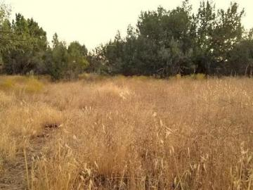 4875 E Geronimo Rd, Wickiup Mesa, AZ
