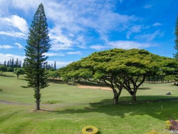 Kapalua Golf Villas condo #14V-1. Photo 4 of 25
