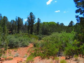 55 Cimarron Ridge Dr, Under 5 Acres, AZ