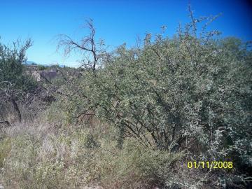5630 N Towers Dr, L Montezuma 1 - 2, AZ