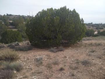 5955 N Faith Marina Dr, Under 5 Acres, AZ