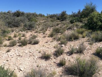 6450 N Canyon Rd, Thunder Ridge, AZ