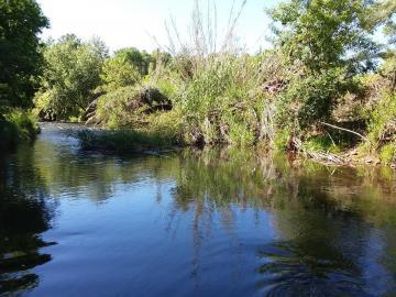 705 S Sheepshead Crossing Rd, Under 5 Acres, AZ