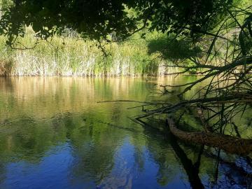7900 E Thousand Trails Rd, 5 Acres Or More, AZ