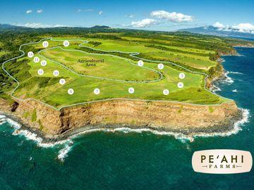798 Kai Huki Cir #Lot 7, Pe´ahi Farms, HI