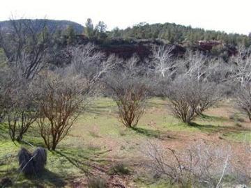 Anglers Way Sedona AZ. Photo 2 of 2