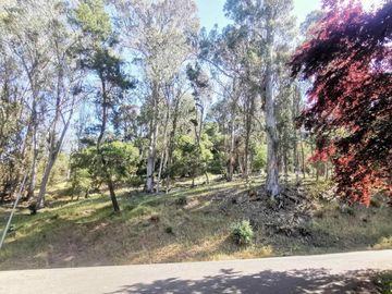 Ascot Dr, Piedmont Pines, CA