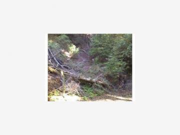Blue Rdg Boulder Creek CA. Photo 1 of 1