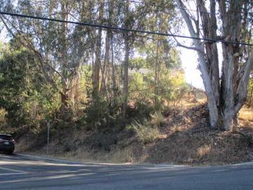 Camino Alta Mira, Castro Valley, CA