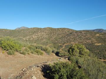 Freeport Rd, 5 Acres Or More, AZ