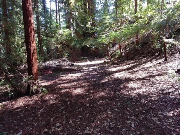 Monan Way, Boulder Creek, CA