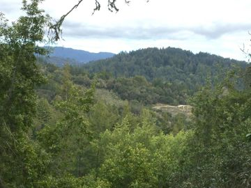 Nelson Rd, Scotts Valley, CA